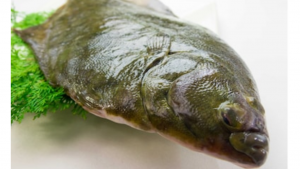a picture of a raw ugly piece of fish, Ugly Fish Images, Stock Photos & Vectors | Shutterstock